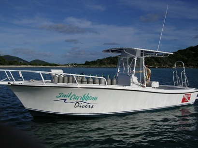 Boat Diver - 26 ft Newton Dive Boat, Sail Caribean Divers