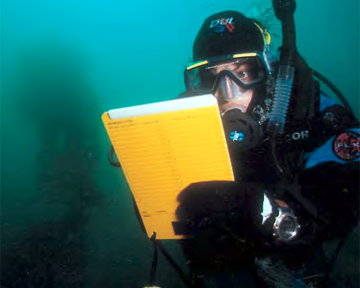The AWARE Package - Diver Recording Information