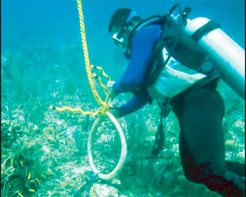 Project AWARE - Diver Repairing Anchorage