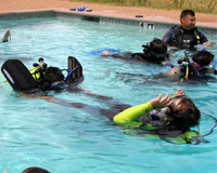 Open Water Diver Course - Confined Water Dive